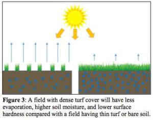 field-evaoporation