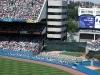new-york-yankees-yankeee-stadium02.jpg
